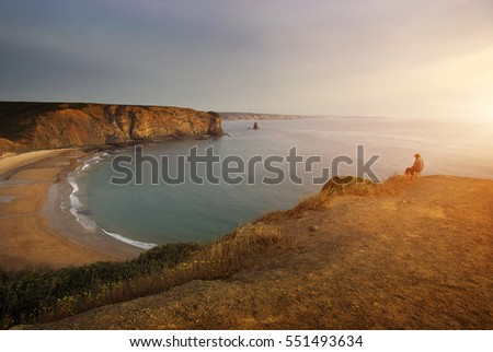 View of Arrifana Beach in portugal at sunset of a summer day