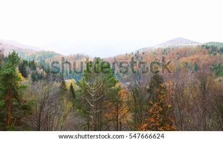 View of autumn mountains
