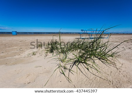 View of baltic sea beach coast shore with yellow sand and blue sky
