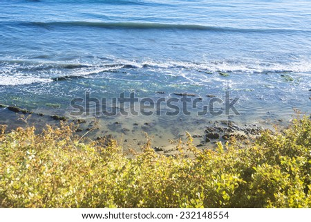 View of beach and reef in Santa Barbara, California from behind colorful foliage on a cliff. - stock photo