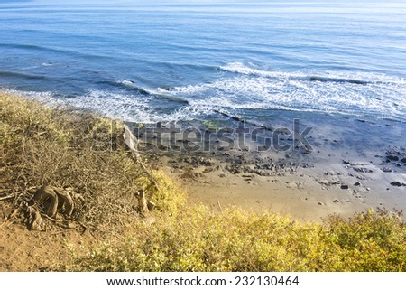 View of beach and reef in Santa Barbara, California from behind colorful foliage on a cliff.B - stock photo