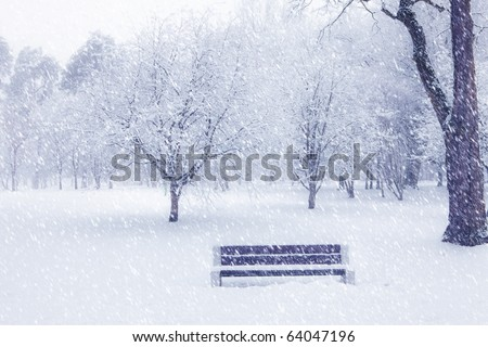View of bench and trees through snowing. Blue tone.