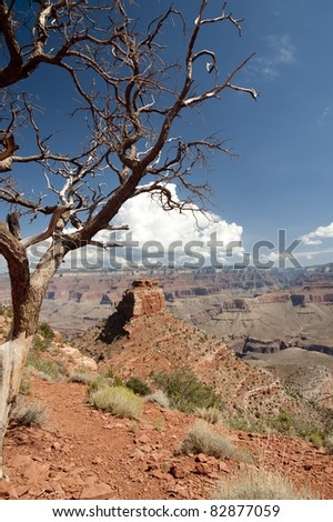 View of Cedar Ridge and Grand Canyon as seen from the South Kaibab Trail - stock photo