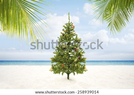 view of Christmas tree on wild empty tropical beach - stock photo