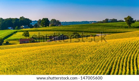 View of corn fields and farms in Southern York County, Pennsylvania. - stock photo