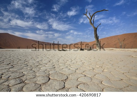 View of Dead valley in Namib desert, Sossusvlei, Namibia