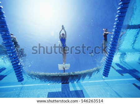 View of female swimmer diving in swimming pool - stock photo