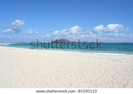 View of Fuerteventura Beach ( Canary Islands, Spain )