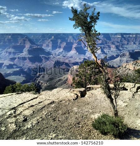 View of Grand Canyon National Park, Arizona - stock photo