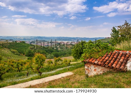 View of green hills with fruit trees plantations and vineyards in spring in Piedmont, Northern Italy. - stock photo
