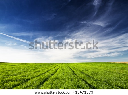 View of green meadow blue sky and white clouds. - stock photo