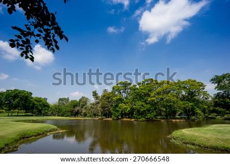 View of green trees in the city park, in sunny summer day - stock photo