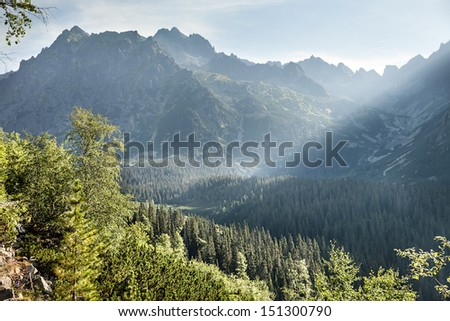View of High Tatra Mountains in the morning mist from hiking trail. Slovakia. Europe. - stock photo