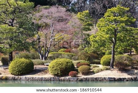 view of japanese garden in spring season  - stock photo
