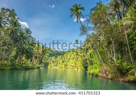 View of  jungle green river Loboc at Bohol island of Philippines
