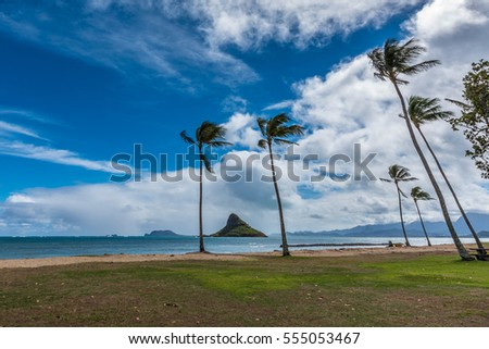 View of Kaneohe Bay, Hawaii with Mokolii, commonly known as Chinaman 's Hat, and beautiful beach with palm trees