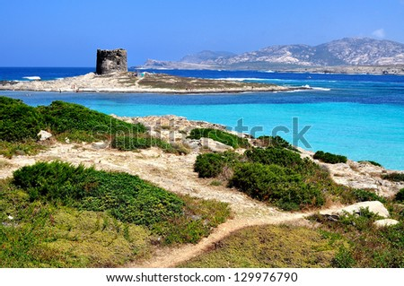 View of La Pelosa beach, characterized by the transparency of its waters and the whiteness of its sand, is considered one of the most beautiful beaches in Sardinia, Italy - stock photo