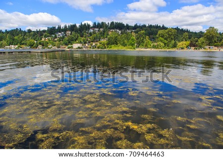 View of Lake Washington in Kirkland, Washington