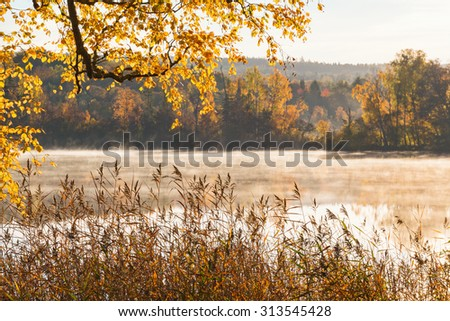 View of lake with mist in autumn - stock photo