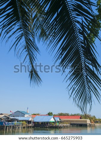 View of local houses through palm trees under a blue sky at Laem Ngop in Trat Province, east Thailand