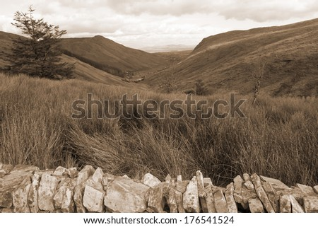 view of long grass and winding road with green mountains in county Donegal Ireland in sepia