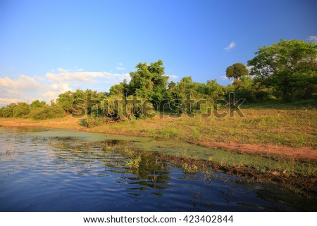View of lush riverbank from boat - stock photo