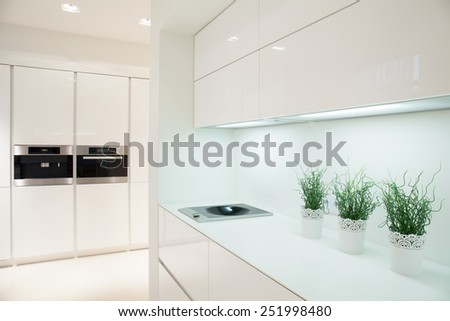 View of modern and expensive kitchen interior - stock photo