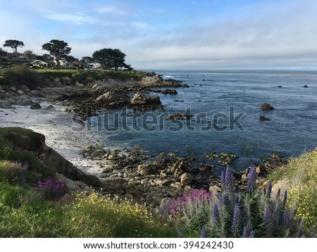 View of Monterey Bay in Pacific Grove