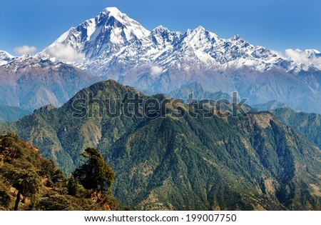 View of mount Dhaulagiri - Nepal  - stock photo