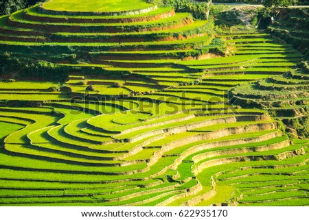 View of mountain with rice terrace in Sapa Vietnam.
