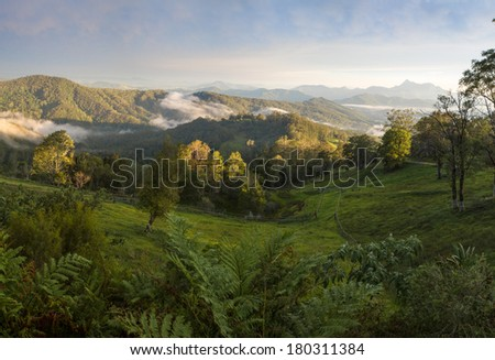 View of Mt Warning in Afternoon Light - stock photo