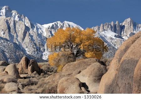 View of Mt. Whitney and the eastern Sierra's from the Alabama Hills near Lone Pine, Ca. USA