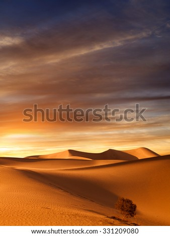 view of nice sands dunes at Sands Dunes National Park - stock photo