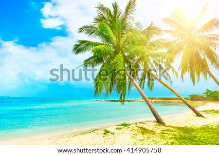 View of nice tropical beach with palms around. Holiday and Vacation - stock photo