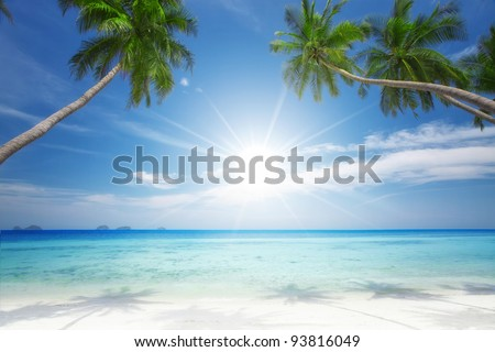 View of nice tropical  beach  with some palms around - stock photo