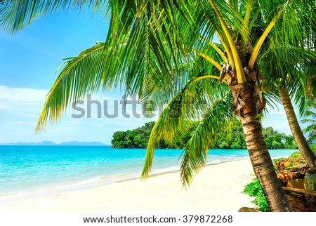 View of nice tropical beach with some palms around. Vacation concept - stock photo