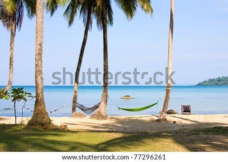 View of nice tropical empty sand beach with some palm and hammock . Thailand . - stock photo