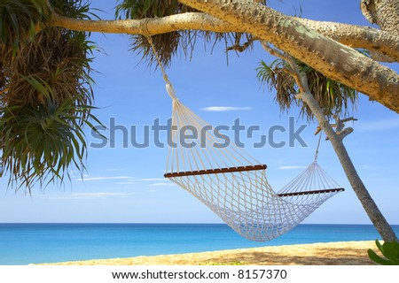 view of nice white  hammock hanging between two palms - stock photo