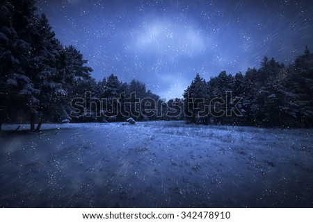 View of night park and many snowflakes - stock photo