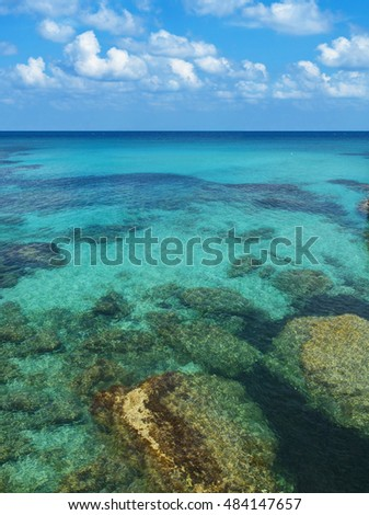 view of rocks and corals under crystal clear water of lagoon against blue sky on sunny summer day on Akamas peninsula, Cyprus