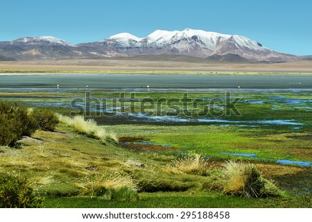View of Salar de Tara with mountains at background, Chile - stock photo