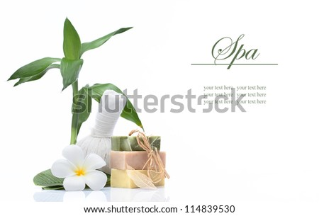 view of spa theme objects on white background. banner. lots of copy space. - stock photo