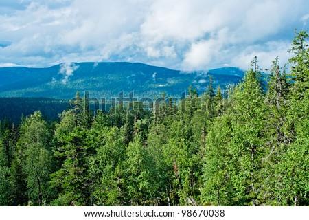 View of taiga in the Kvarkush plateau. Perm Krai. Russia. - stock photo
