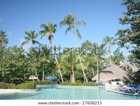 View of tall coconut palm trees and pool at a beautiful tropical resort