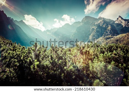 View of Tatra Mountains from hiking trail. Poland. Europe.  - stock photo