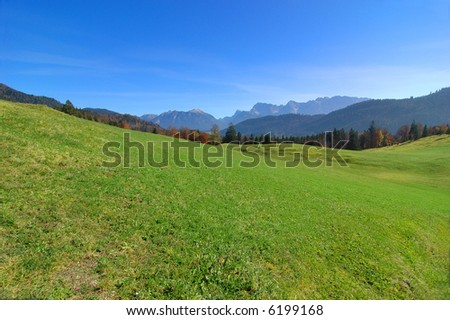 View of the alps with a green field in the foreground