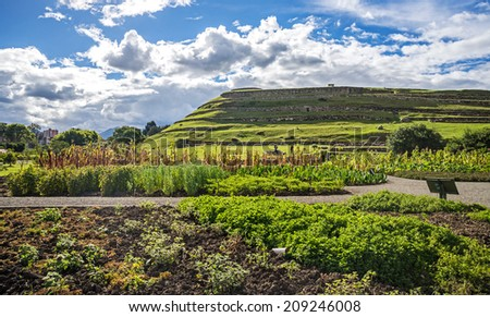 View of the ancient Inca ruins of Pumapungo, Ecuador, on a sunny day with a beautiful garden in the foreground. - stock photo