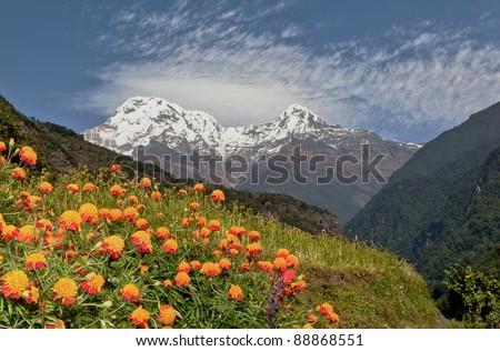 View of the Annapurna South from trek near Jhinu Danda - Nepal, Himalayas - stock photo