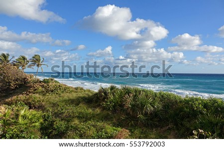 View of the Atlantic Ocean with waves, as seen from behind the sand dune on a windy day in South Florida.