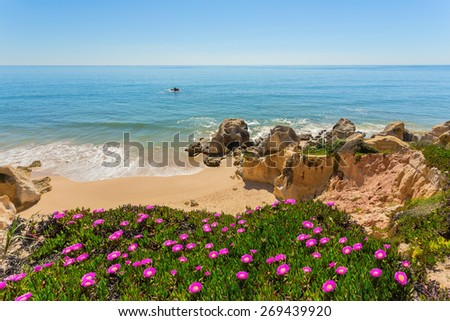 View of the beach from the top spring flowers. Albufeira Portugal ..